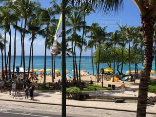 ハワイの写真・画像素材[454344]