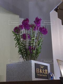 花の写真・画像素材[454818]