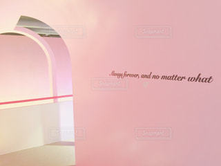 ピンクの写真・画像素材[459675]
