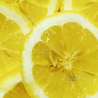 黄色の写真・画像素材[458223]