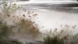 霧が立ち昇っている冬の川の写真・画像素材[2094589]