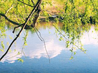 水面に映る青空と雲の写真・画像素材[2109143]