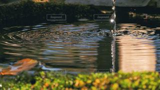 水の波紋の写真・画像素材[2125100]