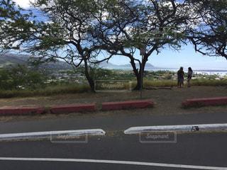 ハワイ - No.456487