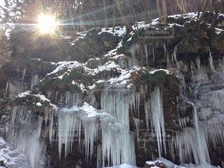 冬の写真・画像素材[466849]