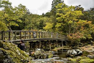 滝の隣にトラック ダウンを走行する列車の写真・画像素材[869085]