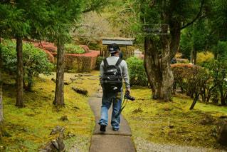 木の隣に歩く男の写真・画像素材[878042]
