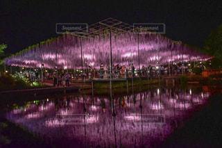 夜ライトアップ橋の写真・画像素材[961877]