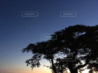 風景の写真・画像素材[506351]