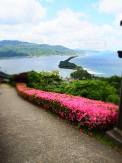 風景 - No.459566