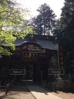 神社の写真・画像素材[468199]