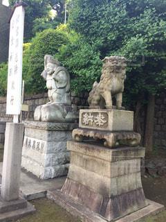 神社の写真・画像素材[495896]