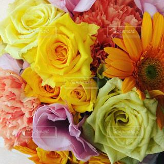 花束の写真・画像素材[588707]