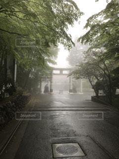 幻想的な三峰神社鳥居の写真・画像素材[1171387]