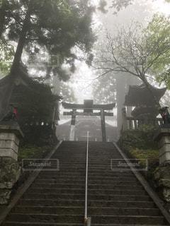 三峰神社本殿前階段の写真・画像素材[1171418]