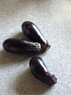 紫の写真・画像素材[598242]
