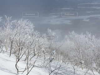 雪山の写真・画像素材[460201]
