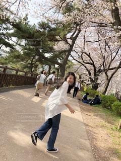 桜並木の下の写真・画像素材[1714850]