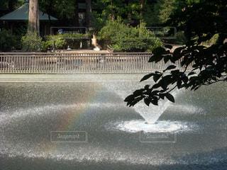 虹の写真・画像素材[461615]