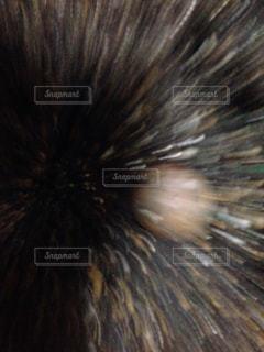 爆発の写真・画像素材[475241]