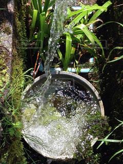 天然水の写真・画像素材[617279]