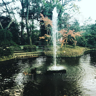 自然の写真・画像素材[514957]