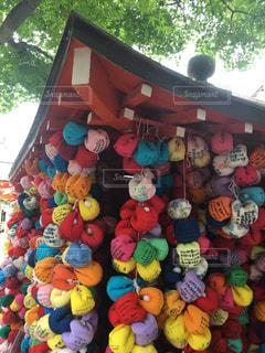 京都の写真・画像素材[554498]