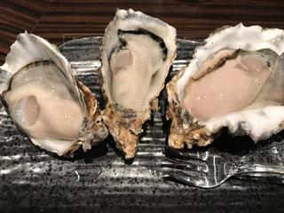 大好きな牡蠣を素敵なオイスターバーでの写真・画像素材[894142]