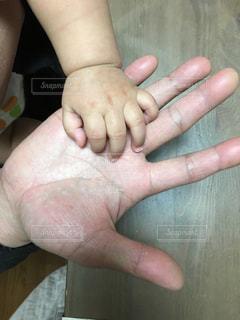 親子の写真・画像素材[463449]