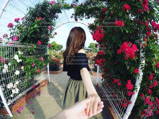 バラに囲まれた彼女🌹の写真・画像素材[508703]