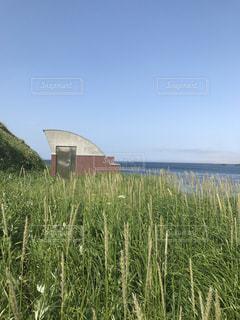 海の写真・画像素材[597982]