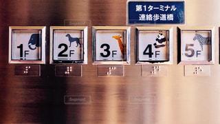 No.492608 動物