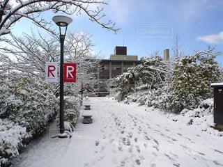 No.571196 雪