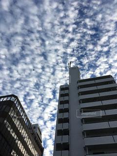 背景の高層ビル街の景色の写真・画像素材[1823733]