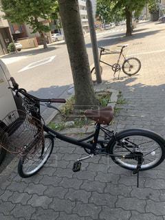 通りの側に駐車している自転車の写真・画像素材[3390932]