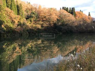 水の体を流れる川の写真・画像素材[903400]