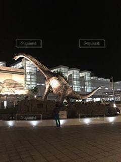 ライトアップの写真・画像素材[468331]