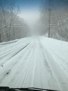 雪の写真・画像素材[468179]