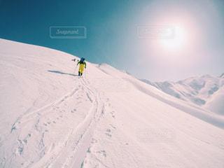 冬の写真・画像素材[468223]