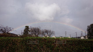 虹の写真・画像素材[490602]