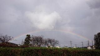 虹の写真・画像素材[490604]