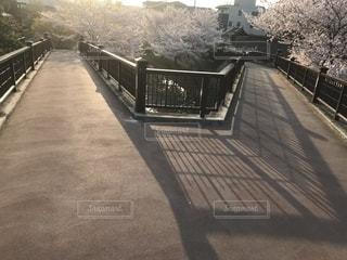 伏見であい橋、桜。の写真・画像素材[1139693]