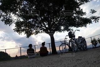 公園の写真・画像素材[536501]