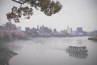風景の写真・画像素材[469048]