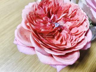 テーブルの上のピンクの花 - No.812322
