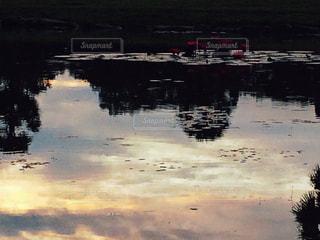 アンコールワットの夜明けの写真・画像素材[478670]
