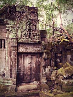 カンボジア・ベンメリア遺跡の写真・画像素材[500008]