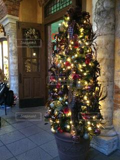 ロマンチックなクリスマス ツリーの写真・画像素材[894423]