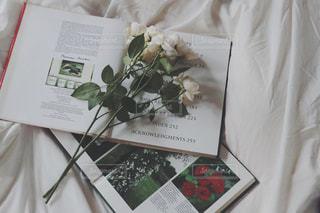 本とお花の写真・画像素材[987023]