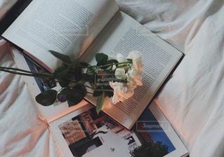 本とお花の写真・画像素材[987025]